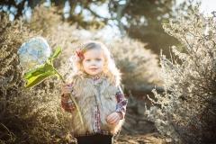 San Francisco Bay Area Family Photography - Niall David Photography-9873