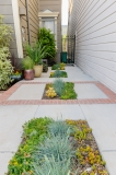 HGTV Home Garden Television Curb Appeal John Gidding San Francisco Bay Area Architecture Interior Design Niall David Photography-1154