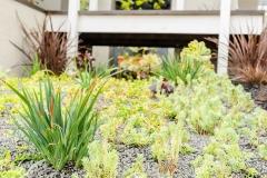 HGTV Home Garden Television Curb Appeal John Gidding San Francisco Bay Area Architecture Interior Design Niall David Photography-1394