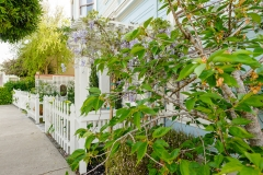 HGTV Home Garden Television Curb Appeal John Gidding San Francisco Bay Area Architecture Interior Design Niall David Photography-1502