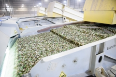 Commercial-Industrial-Facility-Business-Marketing-Glass-Recycling-Plastic-Recycler-Niall-David-Photography-1010